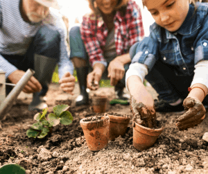 eco friendly gifts gardening