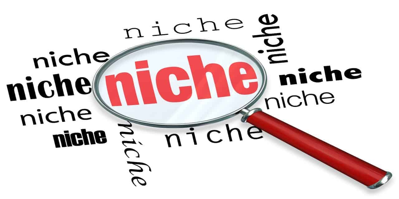 Overcome the fear of entering what is considered a saturated niche